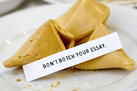 essay_botch